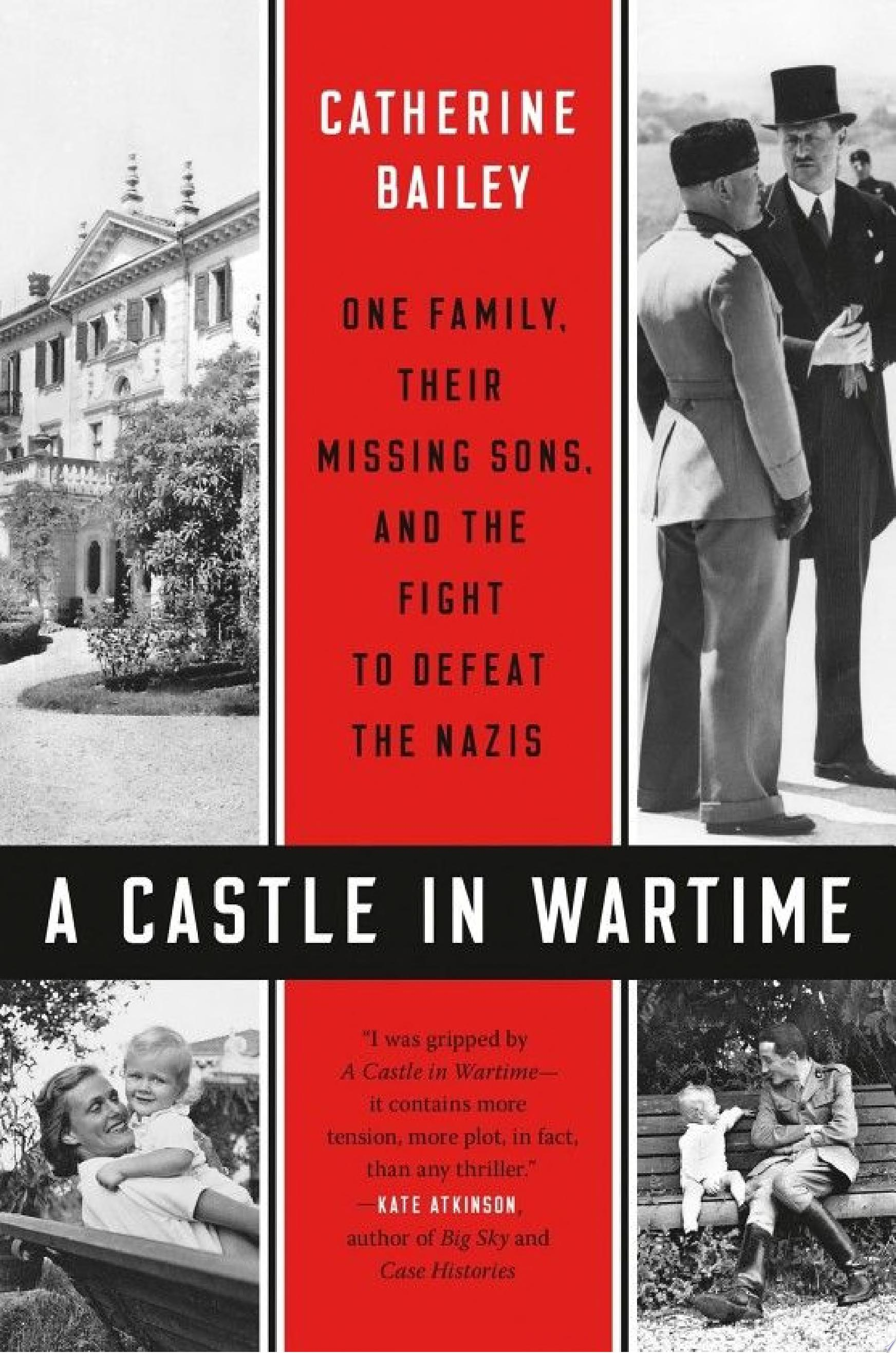 "Image for ""A Castle in Wartime"""