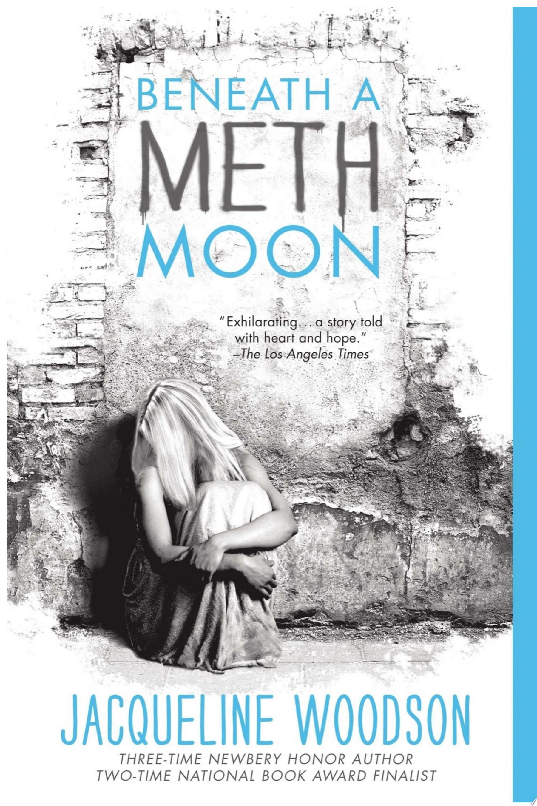 "Image for ""Beneath a Meth Moon"""