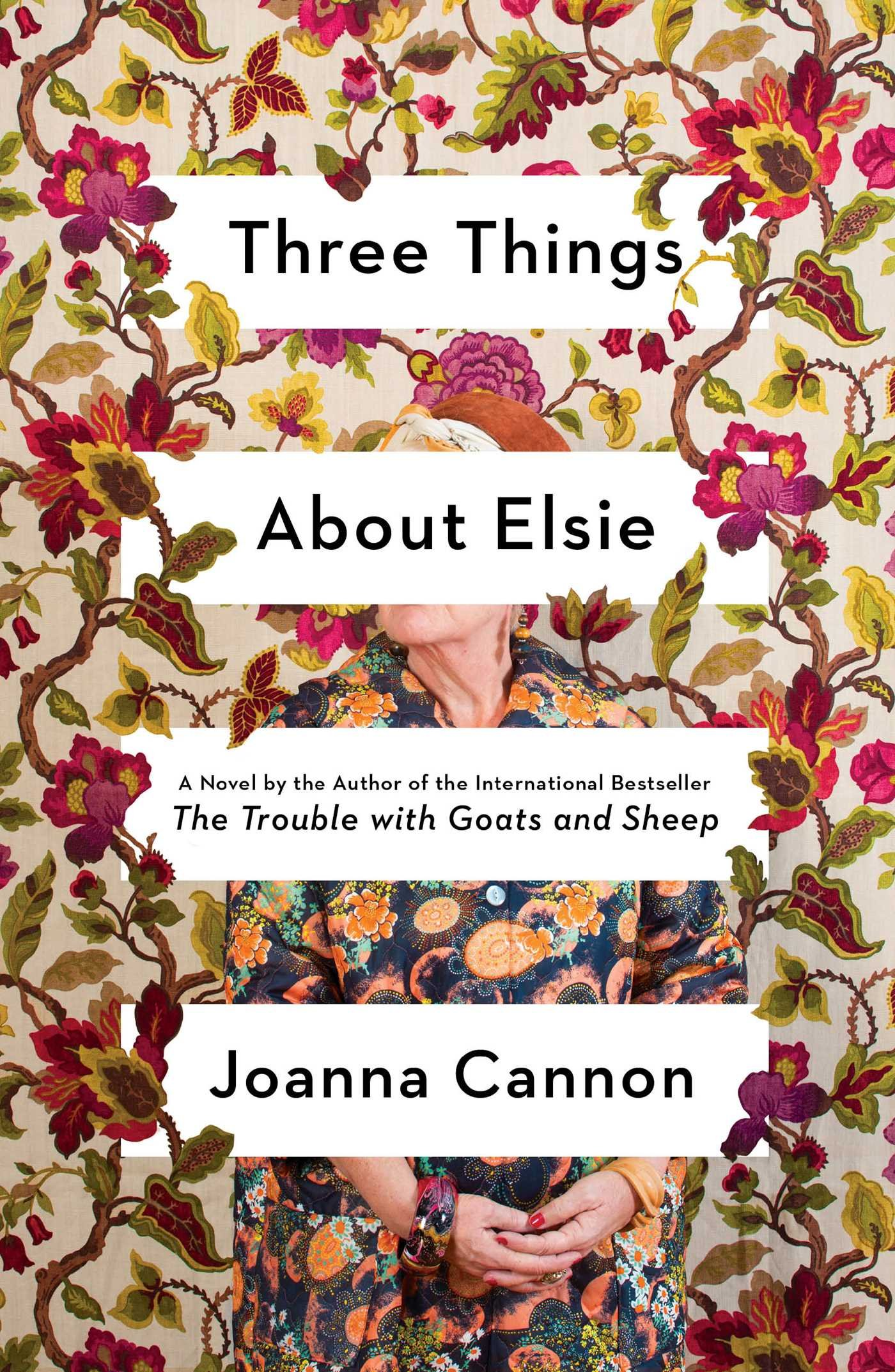 Three Things About Elsie Book Cover Illustration